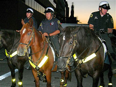 Milwaukee Police horse force keeps watch from the top