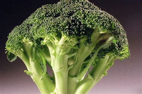 Broccoli could be key to the treatment of pancreatic