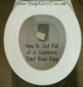 How to Get Rid of a Stubborn Toilet Bowl Ring | Budget