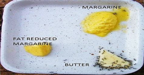 The Fat Facts: Butter vs Margarine, The Truth We're Not